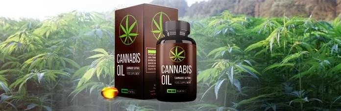 Hagyja abba a dohányzást egyszer és mindenkorra Cannabis Oil!