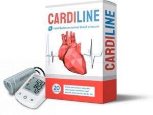 Hogyan működik a CardiLine munka? A termék áttekintése