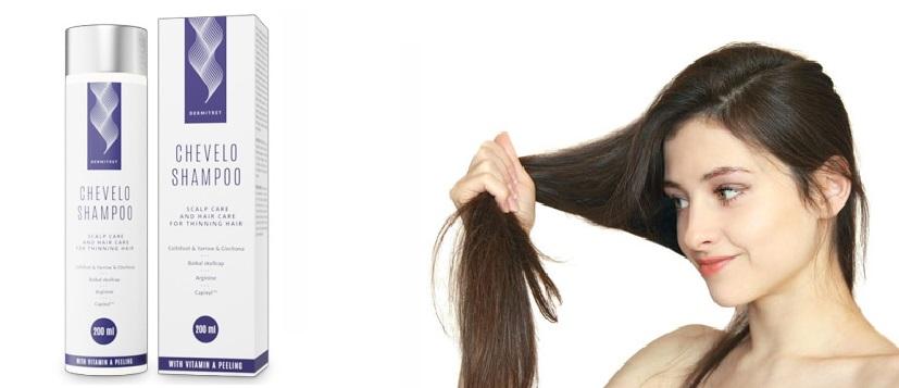 Hol lehet megvásárolni Chevelo Shampoo rendelés? Az online elérhető?